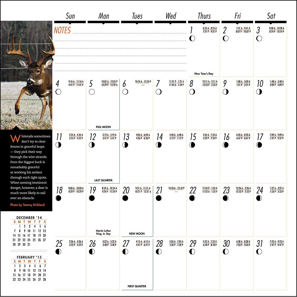 whitetail deer movement calendar