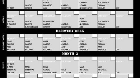 Printable Insanity Workout Calendar Pdf – Printable Editable Blank