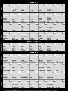 Insanity Workout Schedule Free Insanity Workout PDF | Honest