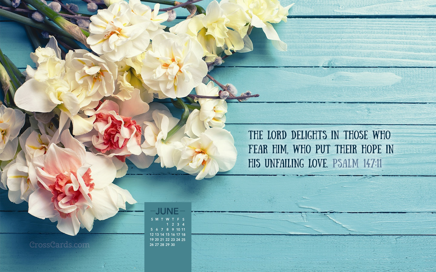 June 2016 Psalm 147:11 Desktop Calendar Free June Wallpaper