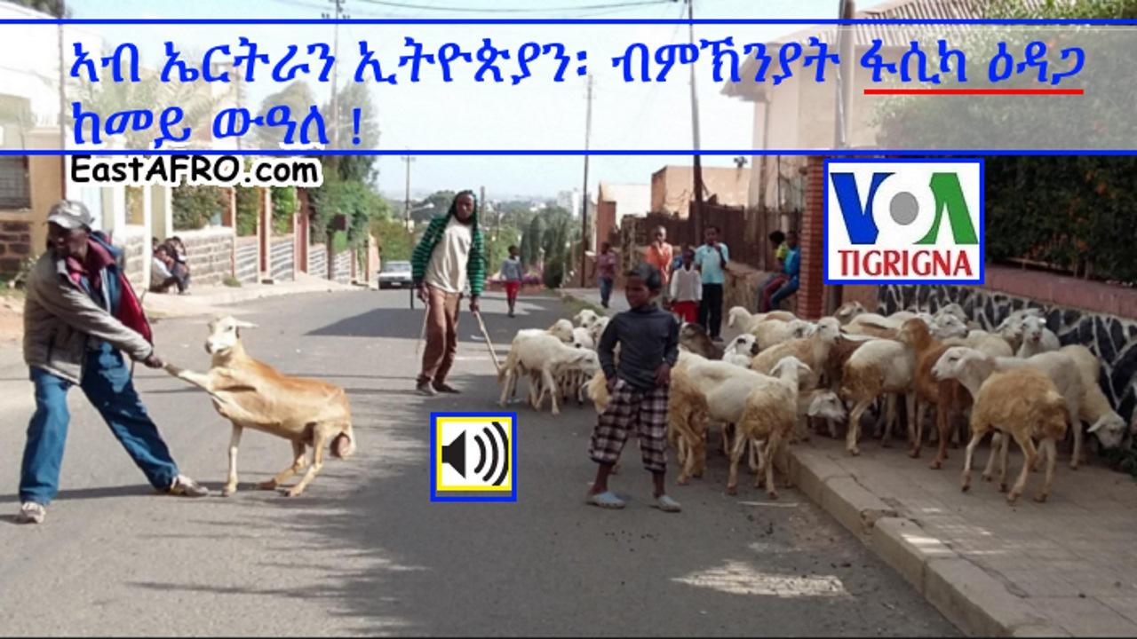 VOA Tigrigna: Eritrea Ethiopia Orthodox Easter 2016 ኣብ