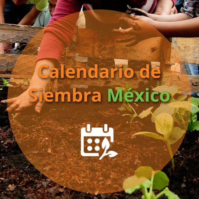 Calendario De Feriados 2016 En Sagarpa Calendar Template 2016