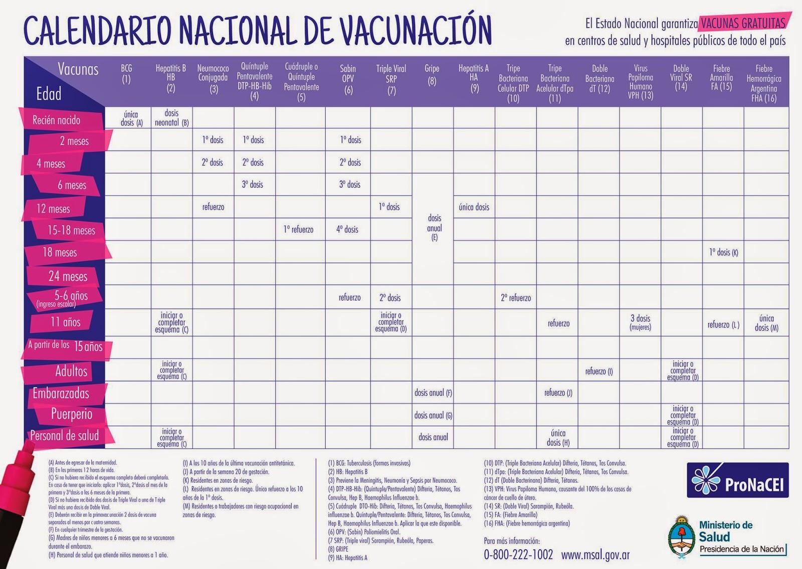 Calendarios Modelos De Puerto Rico