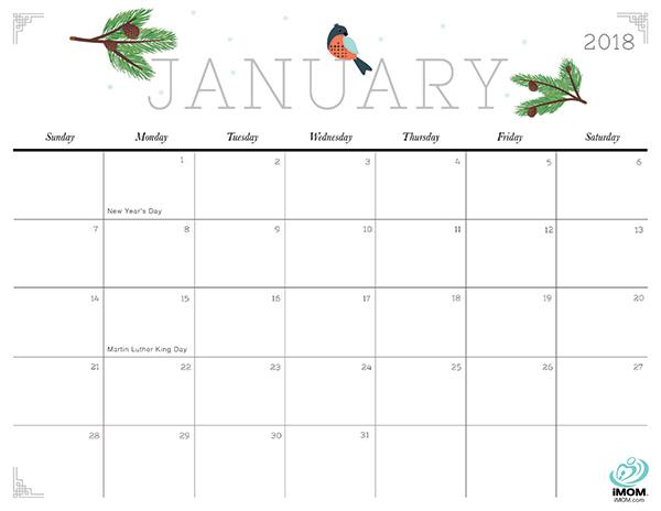 2017 Printable Calendar for Moms | Printable calendars, Organizing