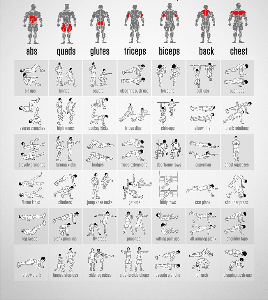 Bodyweight Exercises Chart | Body Workout Plan, Full Body