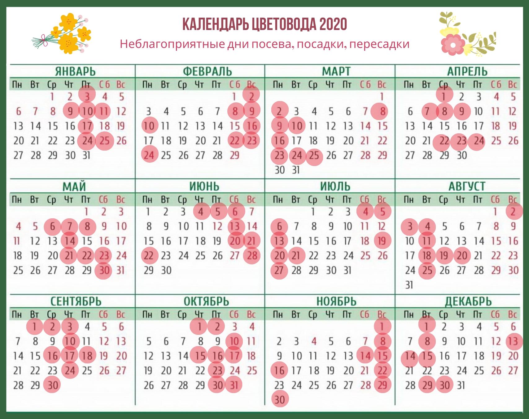 Календарь Цветовода На Каждый Месяц 2020 Года (Лунный) | Дача
