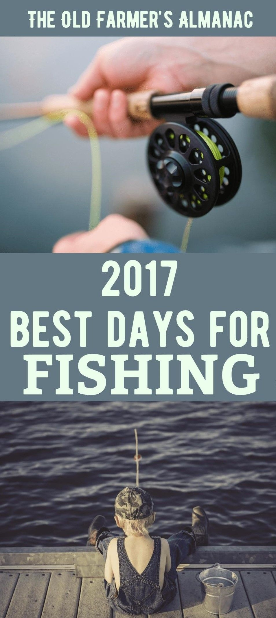 Fishing Calendar For 2020 (With Images) | Fishing Tips, Best