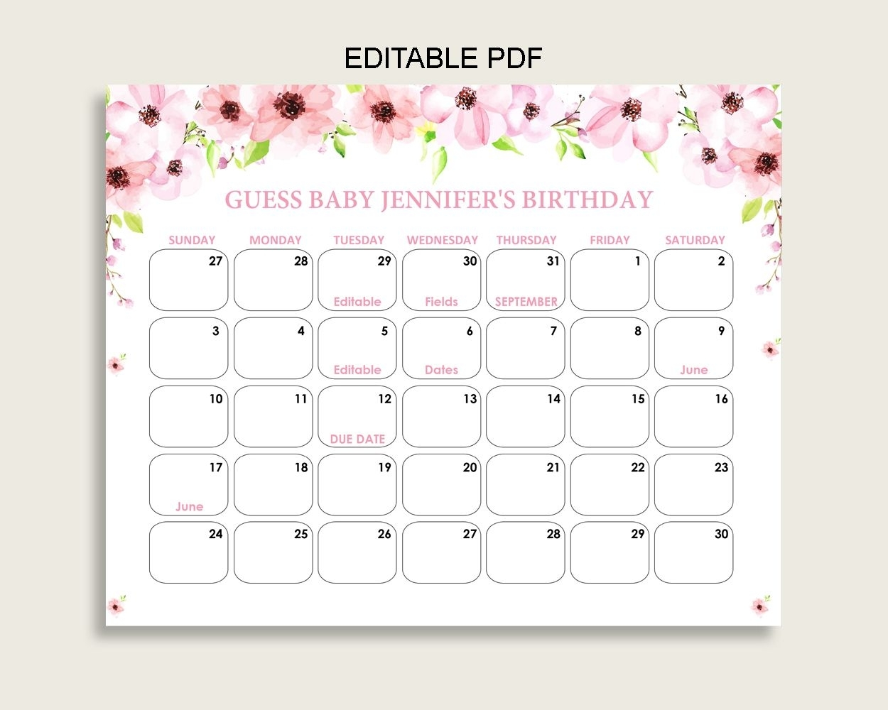 Pink Green Guess Baby Due Date Calendar Game Printable