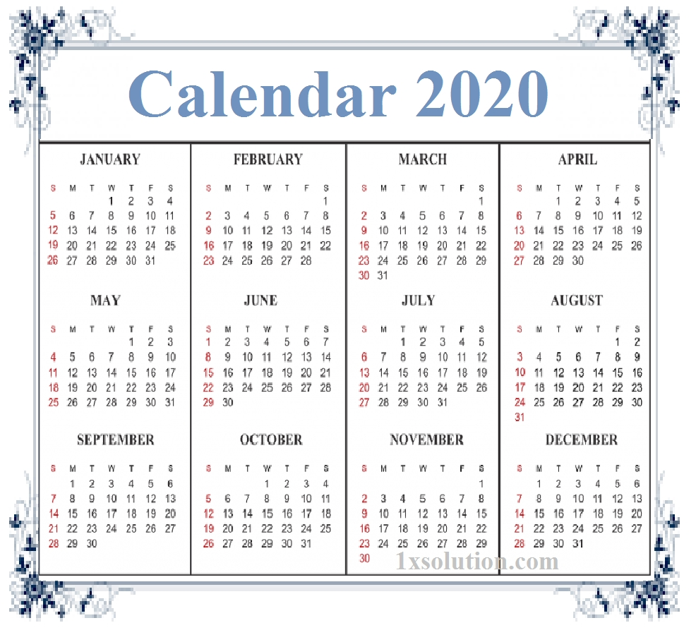 2020 Daily Calendar- To Write Your Important Notes | | Calendar