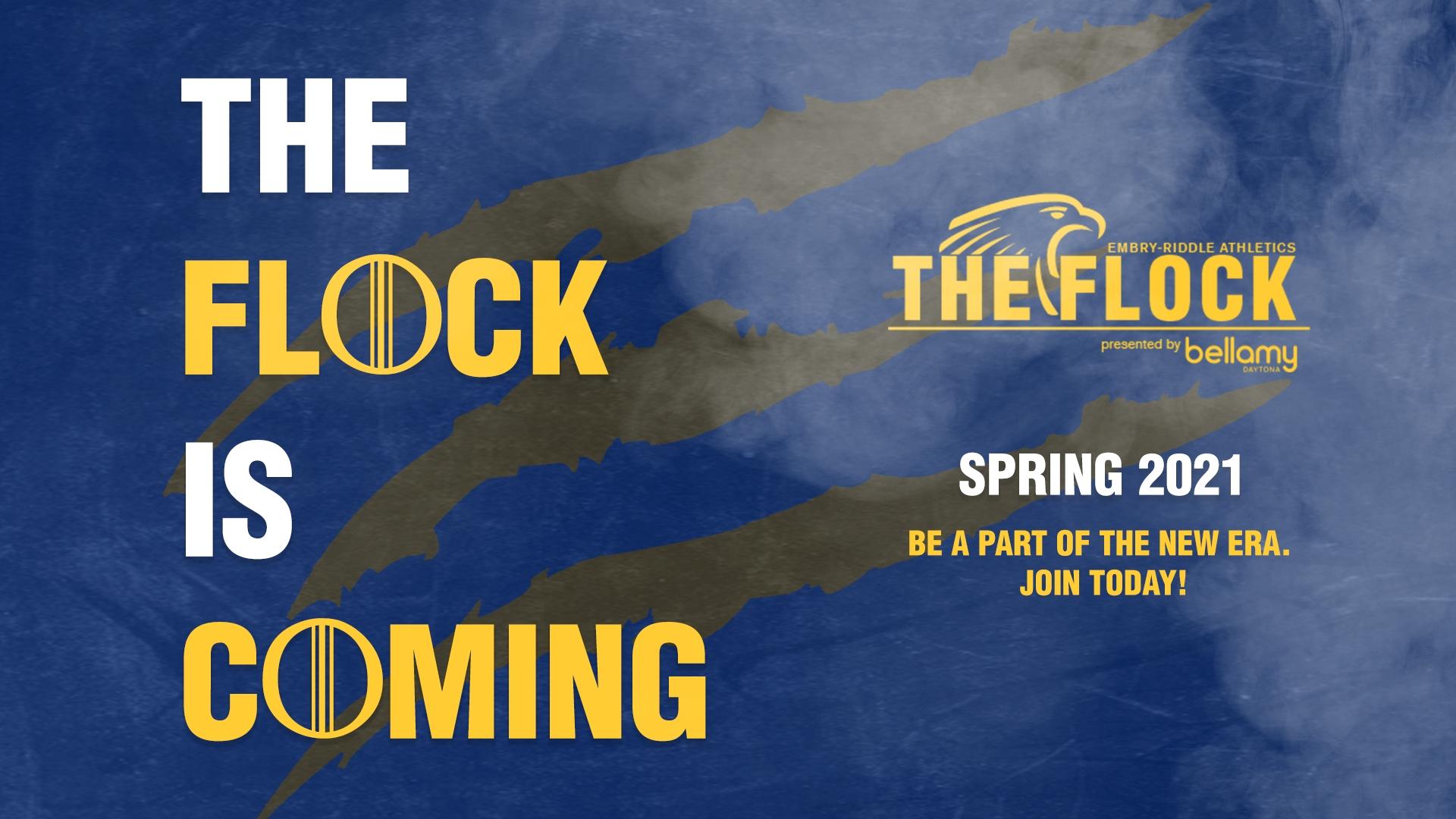 About The Flock - Embry-Riddle Aeronautical University Athletics
