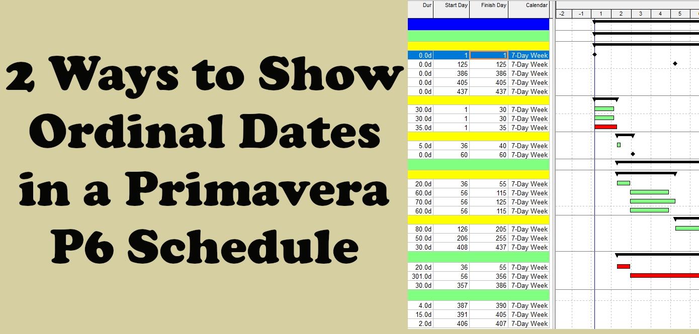 Show Calendar Days Instead Of Dates In Primavera P6 Schedule
