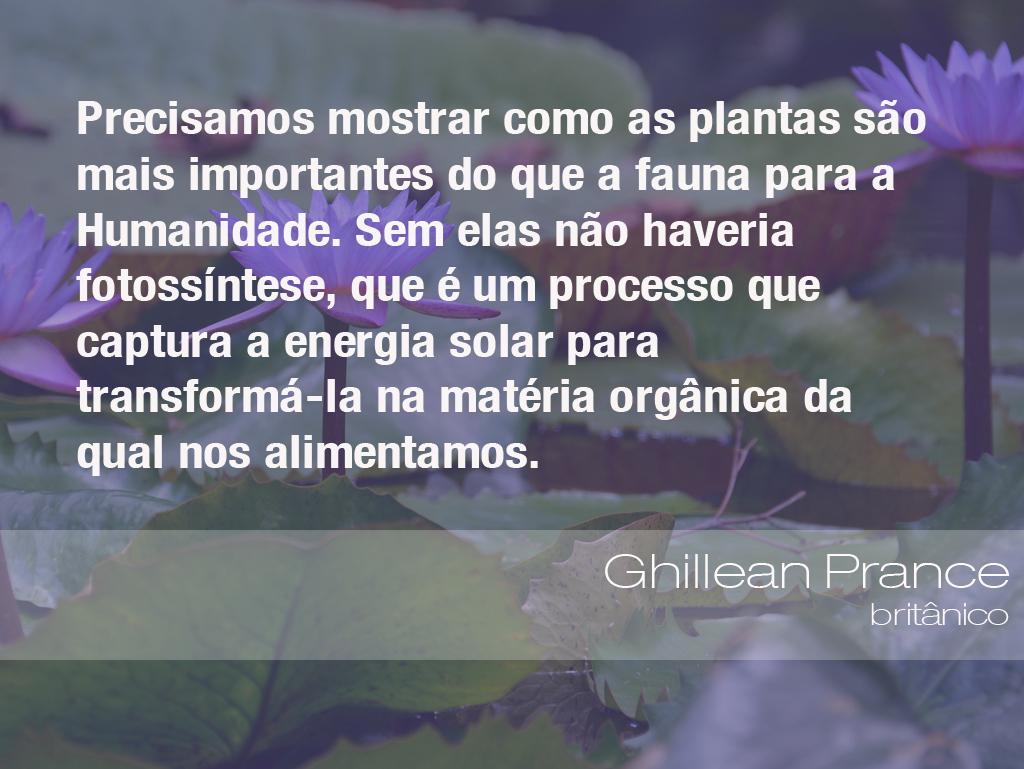 Frases Do Meio Ambiente - Ghillean Prance, Botânico (15/02
