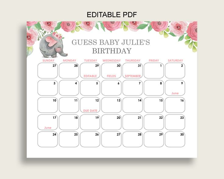 Pink Grey Guess Baby Due Date Calendar Game Printable