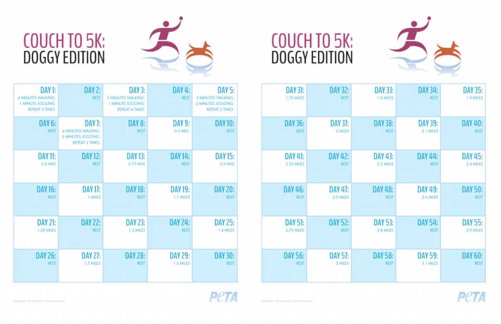 Couch To 5K: Doggy Edition | Peta